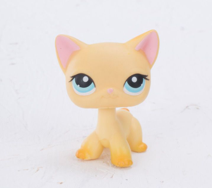 Cats Lps Blue Eyes And Blonde