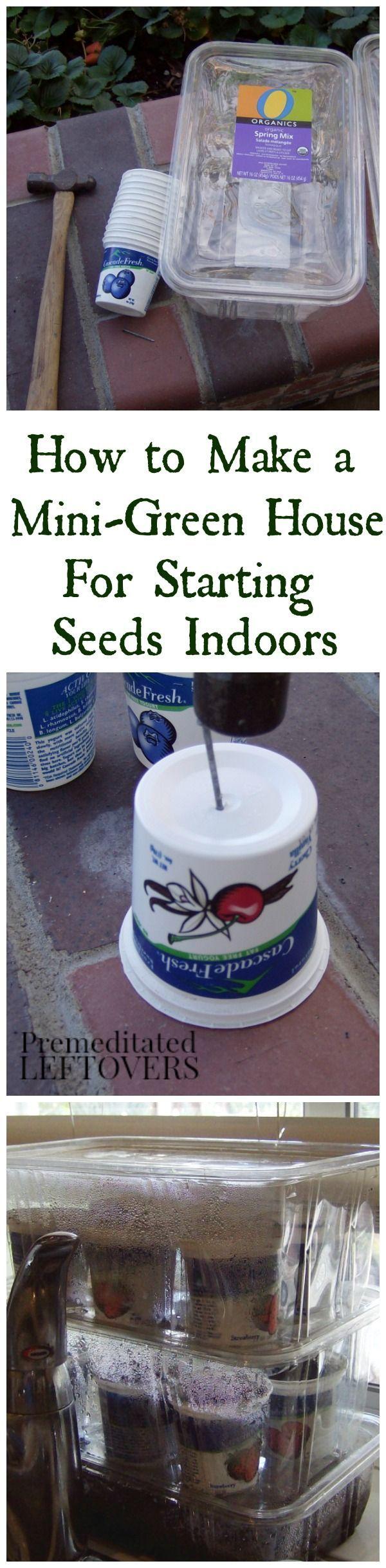 Best 25+ Mini Greenhouse Ideas On Pinterest  Portable Greenhouse, Small  Greenhouse And Diy Greenhouse