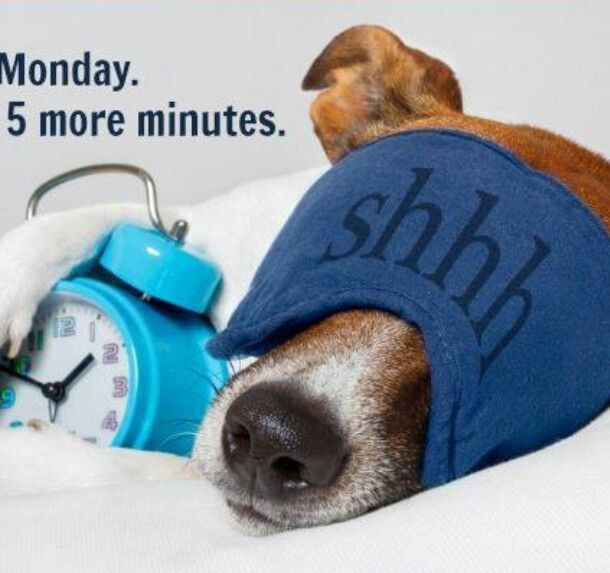 Monday 5 More Minutes