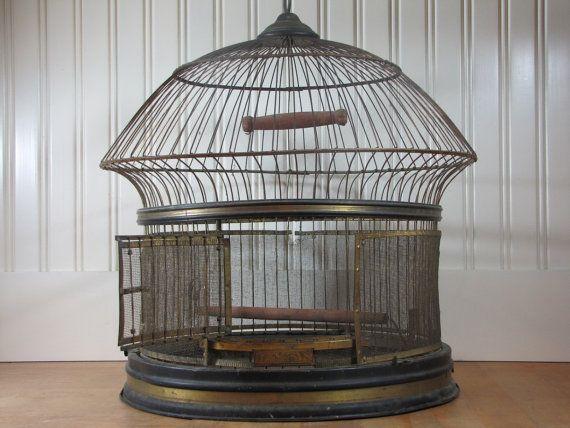 Antique, Hendryx 🇸🇦🇸🇦🇸🇦🇸🇦🇲🇴 Birdcage Ideas: More At FOSTERGINGER @ Pinterest.🇲🇴🇸🇦🇸🇦🇸🇦