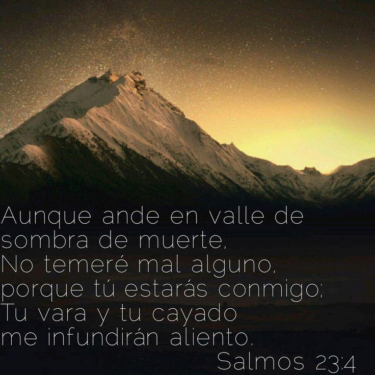 Aunque ande en valle de sombra de muerte, No temeré mal alguno, porque tú estarás conmigo; Tu vara y tu cayado me infundirán aliento. Salmos 23:4 RVR1960 http://bible.com/149/psa.23.4.RVR1960