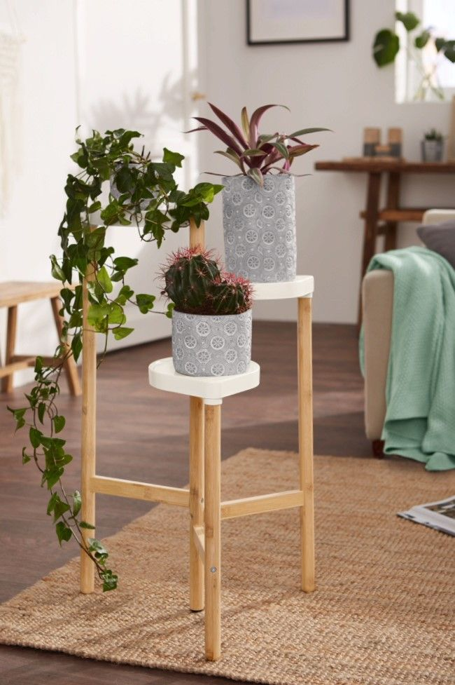 Lidl S New Gardening Collection Is Total Plantspiration Decor Home Decor Lidl