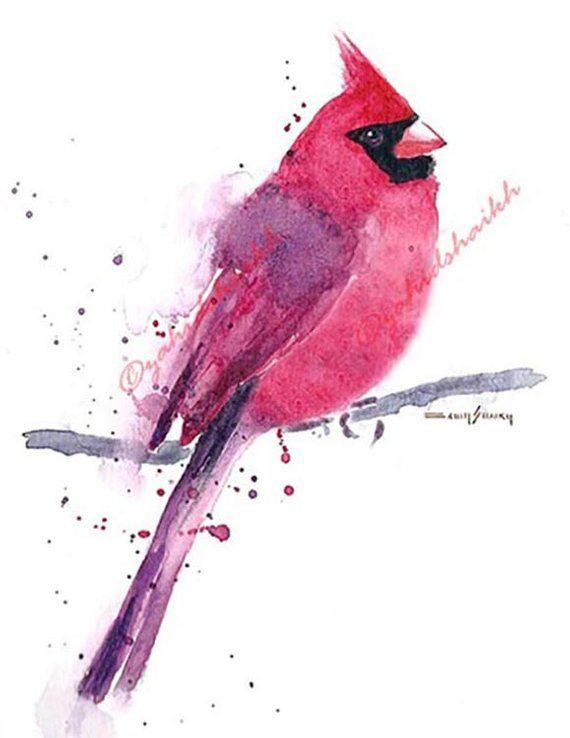 Cardinal Bird Vintage Bird Illustration Cardinal Birds