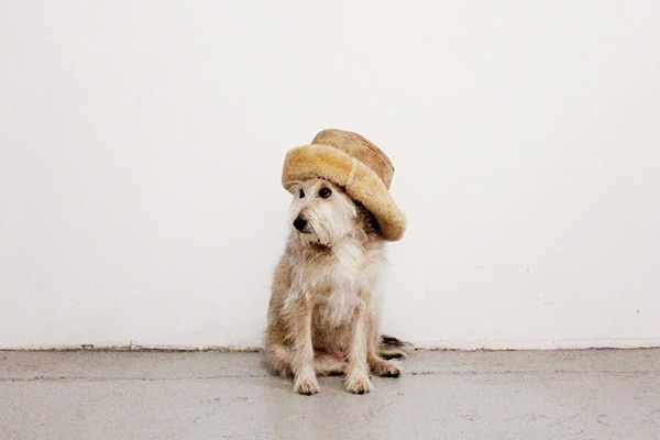 Take a cue from this adorable doggie and stay warm with a big furry hat!