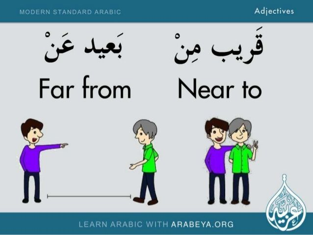 Adjectives in Modern Standard Arabic -