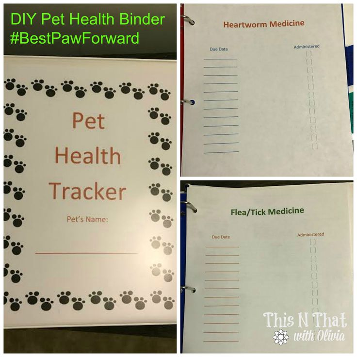 Health, DIY And Crafts And Pet Health On Pinterest