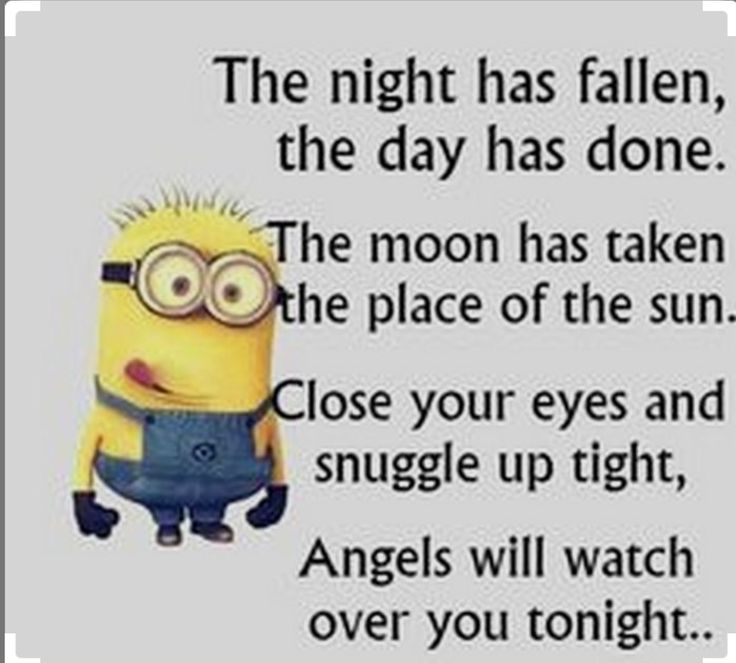 Good Joke Quotes: 1000+ Ideas About Good Night Funny On Pinterest