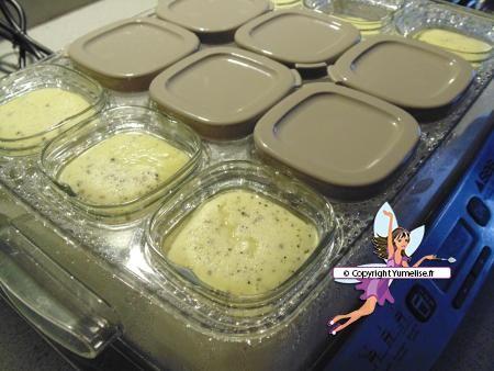 Flans vanillés à la Multi Délices. Recette de cuisine ou sujet sur Yumelise blog culinaire.