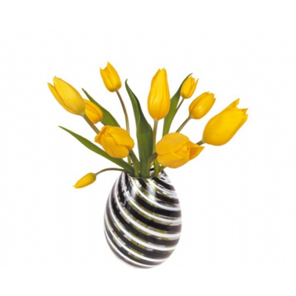FLAT FLOWER YELLOW TULIP LARGE