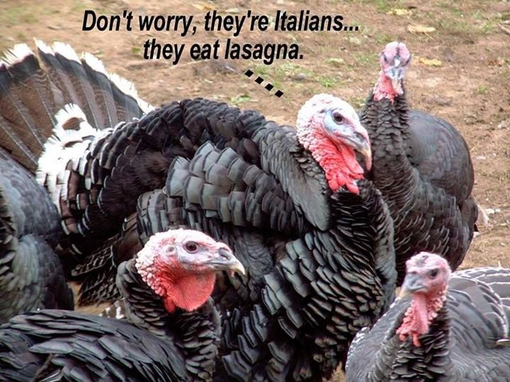 Don't worry, they're Italians...they eat lasagna ...