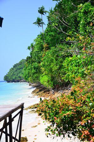 Kakaban Island, Kalimantan, Indonesia, by Ivonne Peupelmann