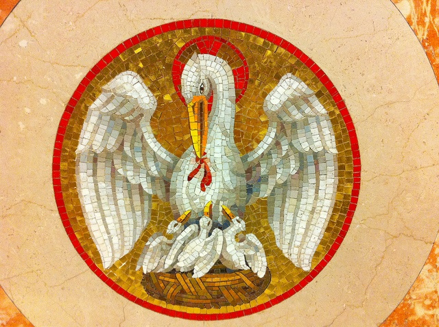 An early Christian symbol of Christ, the pelican feeding its young from its own flesh is found on Medieval church altars. This modern mosaic is in St. William the Confessor church, Greenville Texas.