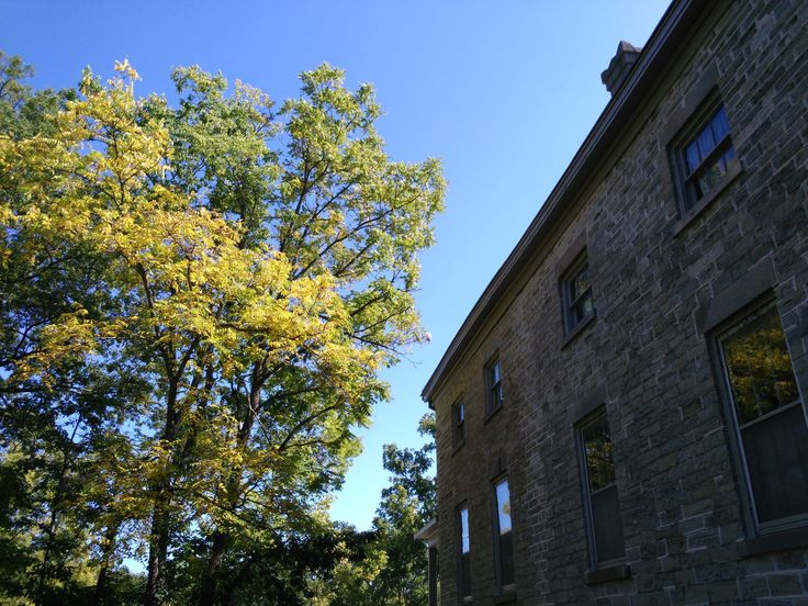Fall 2017 colours beside the 1840s Greek Revival Mansion at Ruthven Park National Historic Site