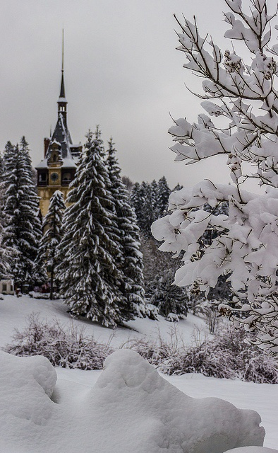 Winter at the Peles Castle in Sinaia town, Romania