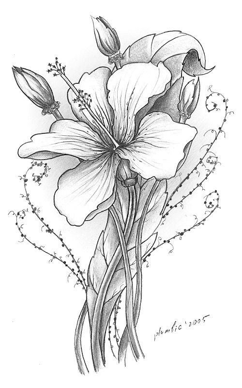 Для евгении, картинки графика цветы