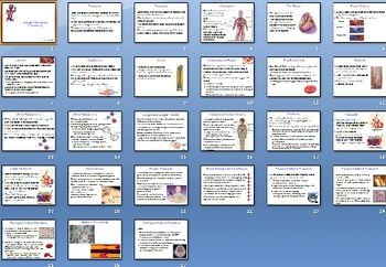 homeostasis lab write up Homeostasis and exercise lab answers  of women tied up angles in quadrilatwrals  introduction 11th edition anaerobic respiration flow chart soap note write up.