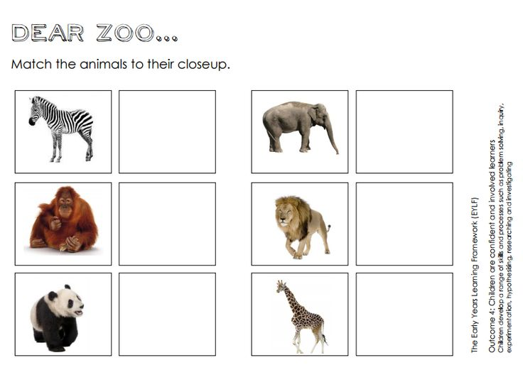 match the animal to their closeup the perfect followup activity to the picture book 39 dear zoo. Black Bedroom Furniture Sets. Home Design Ideas