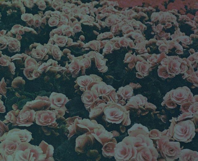 U KNOW ME RECORDS ALL STARS w składzie: Envee x Buszkers x Groh