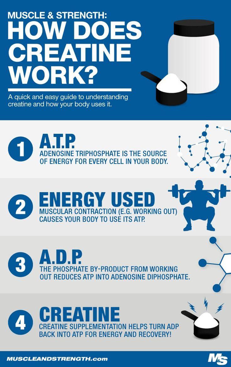 How Creatine Monohydrate Works