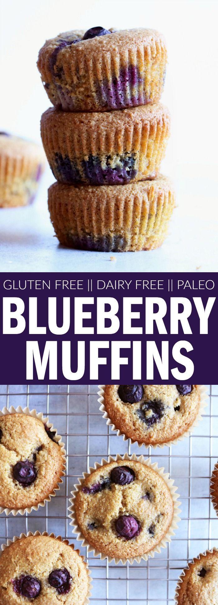 gluten free + paleo Blueberry Muffins!!