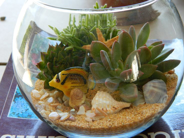 50 best Fish Tank Ideas images on Pinterest | Fish aquariums ...