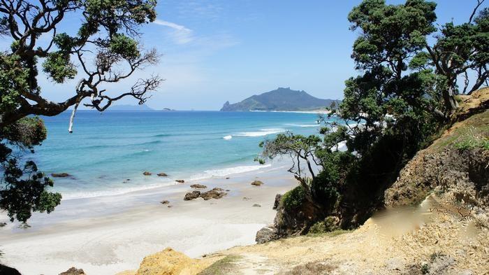 Kauri Mt Beach Whangarei Heads New Zealand