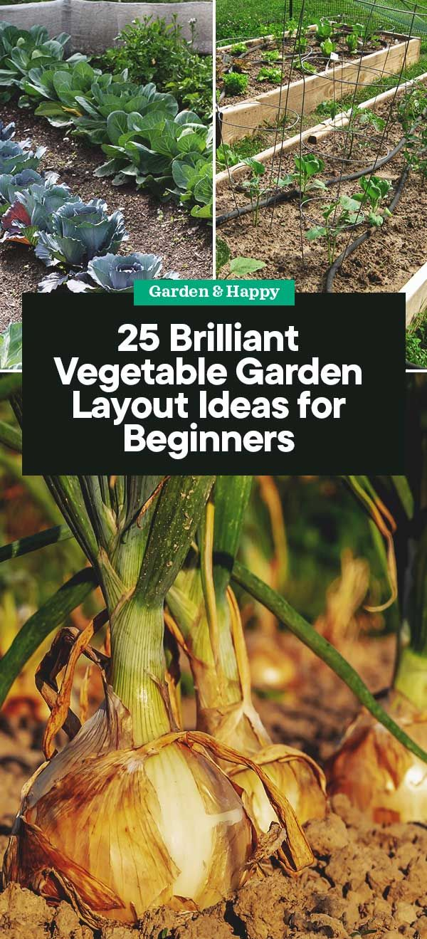 25 Brilliant Vegetable Garden Layout Ideas For Beginners Fruit