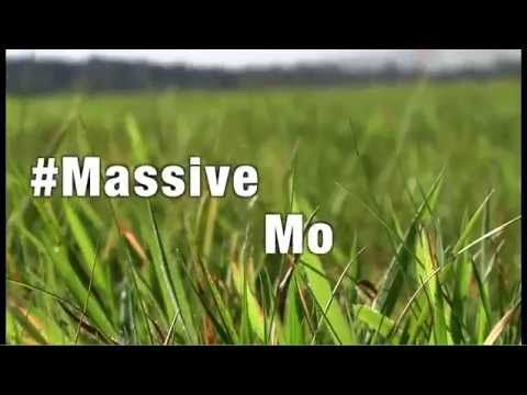 Movember 2014 - Making of the world's biggest field Mo