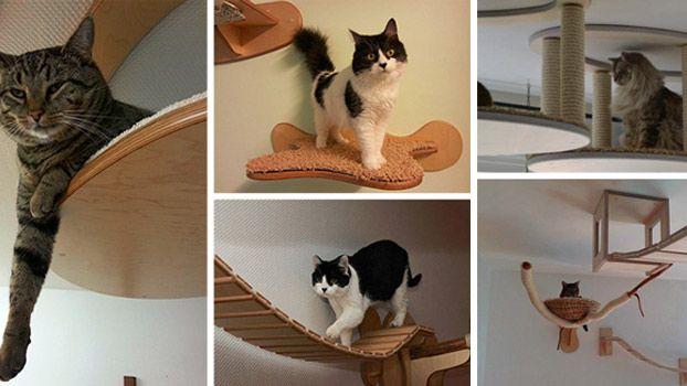 4 accessori per la casa di design per gatti