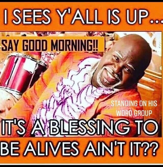 Pin By Cheryl Clowers On Good Morning Blessings In 2020 Funny Good Morning Quotes Good Morning Meme Morning Humor