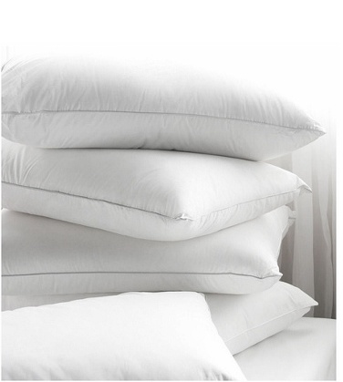 Set of 2 - Giovanni 100% Goose Down Alternative Pillow - Save 81% only $29.00