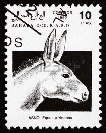 SAHARA - CIRCA 1992: a stamp printed in Sahrawi Arab Democratic Republic shows African Wild Donkey, Equus Africanus, Animal, circa 1992