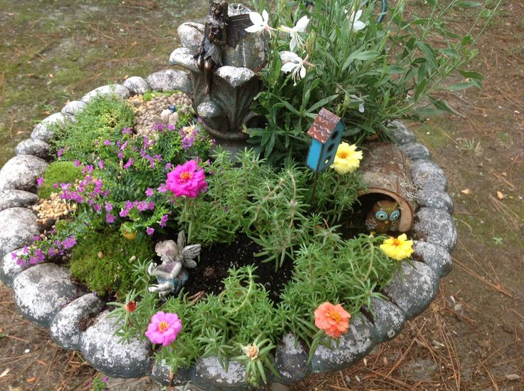 10 best gardeners glossary images on pinterest edible garden back view of a fairy garden in an old fountain used texas butterfly weed fandeluxe Gallery