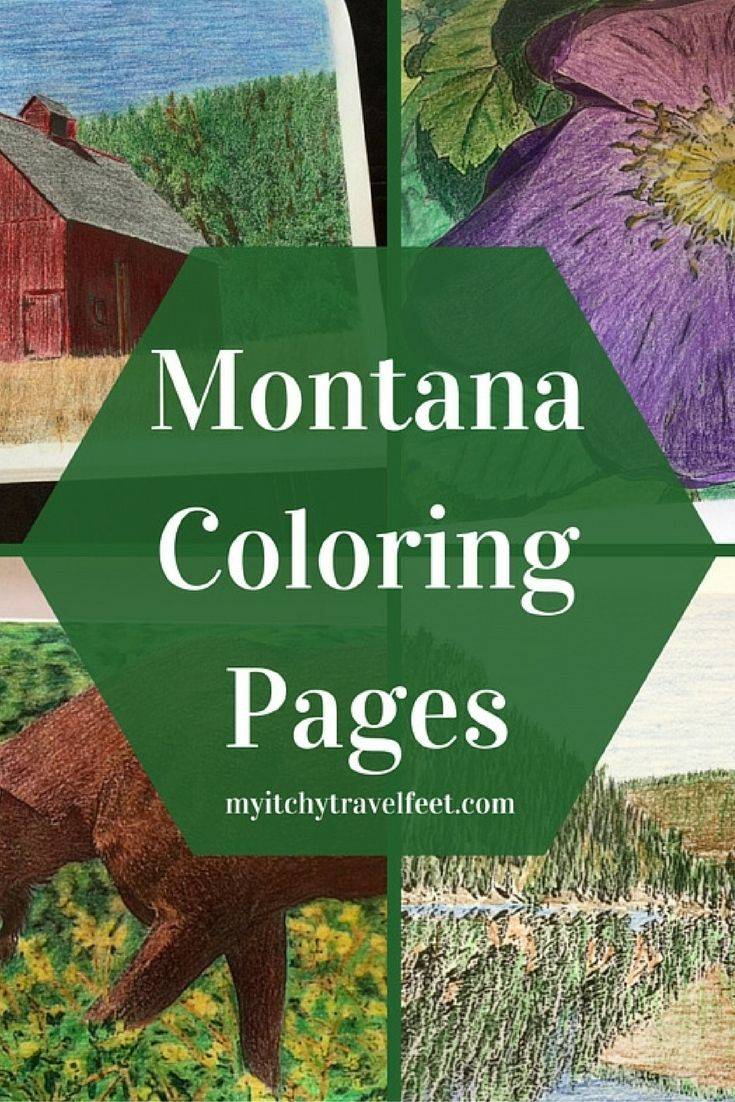 180 best Adult Coloring images on Pinterest | Coloring books ...