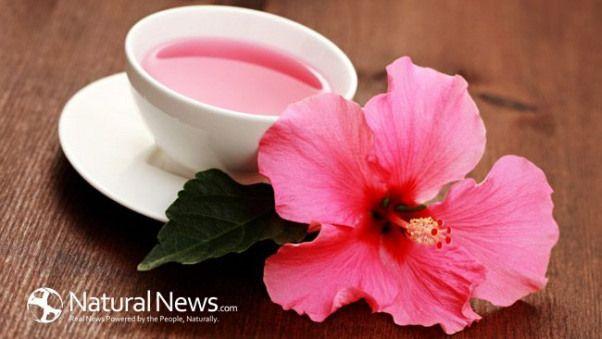 15 Brilliant Diabetes Dessert Diet Ideas Hibiscus Tea Diabetic Snacks Hibiscus