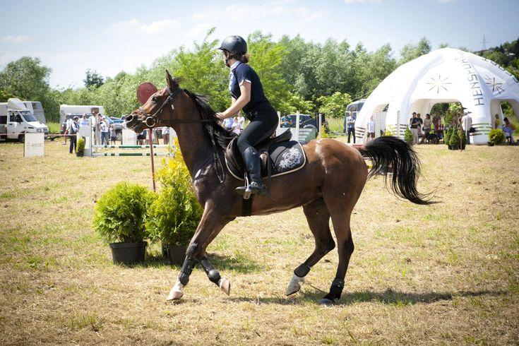 Uczestniczka zawodów jeździeckich podczas 14. Wielkiego Pikniku Charytatywnego.  #horse #przemyśl #poland