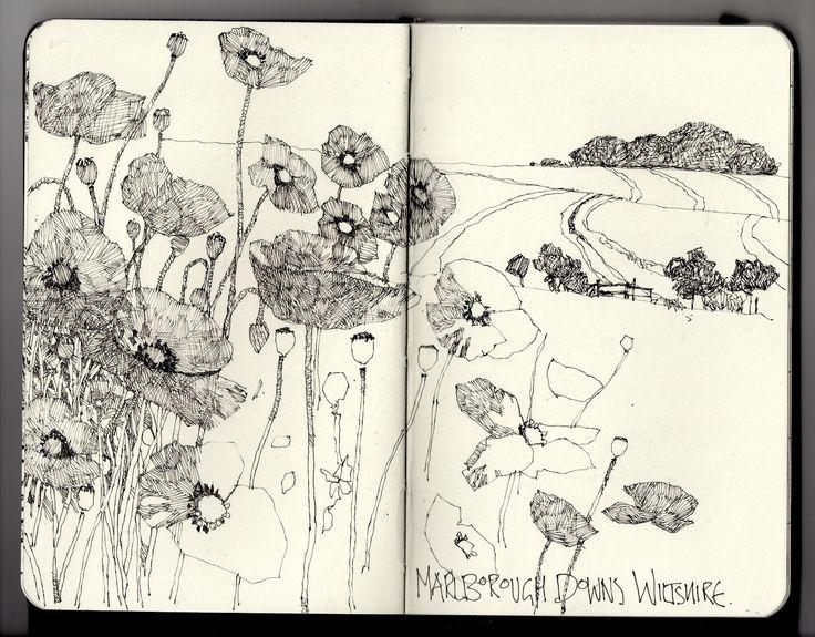 Ian Sidaway Fine Line: Marlborough Downs. Amazing daily moleskin drawings