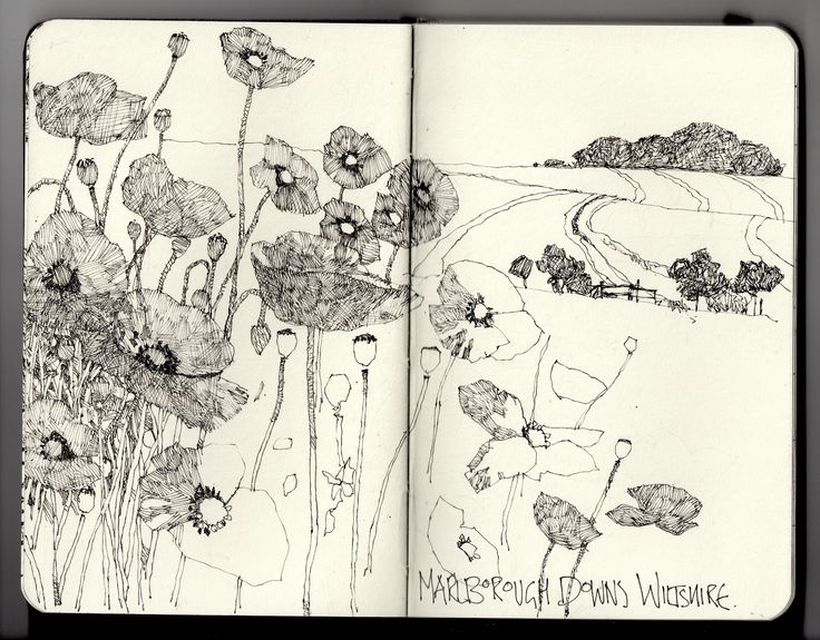 Ian Sidaway Fine Line: Marlborough Downs. daily moleskin drawings