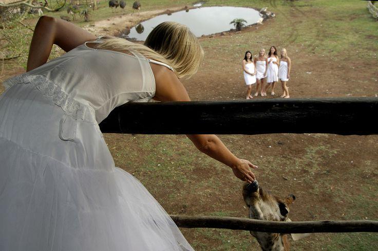Hayley & Brad were married at Zulu Nyala Game Reserve