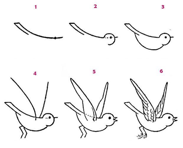 Kolay basit kuş çizimi örnekleri