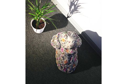 SashaAgapova Dog