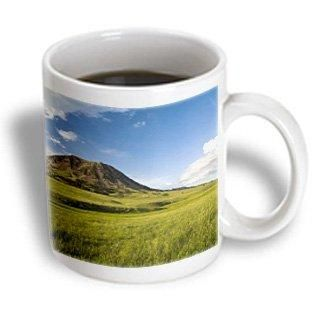 3dRose Bear Butte State Park near Sturgis South Dakota - US42 CHA0030 - Chuck Haney, Ceramic Mug, 15-ounce