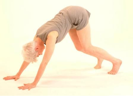 the basics of yoga essay 7 things every yoga teacher should know about anatomy log in my account saved articles practices as a yoga teacher legs, and torso are essential to know in order to understand the basic structure of the body also.