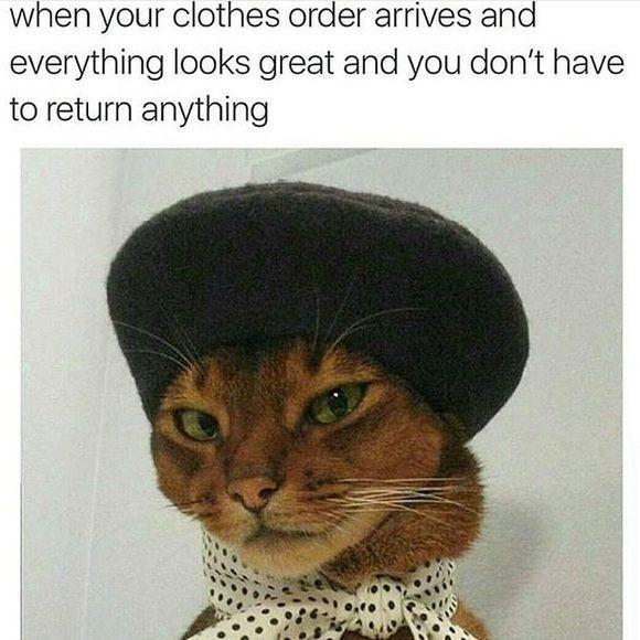 New meme guys  Weekend humor  Wildfox Sweaters
