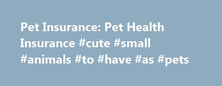Pet Insurance: Pet Health Insurance #cute #small #animals #to #have #as #pets http://pet.remmont.com/pet-insurance-pet-health-insurance-cute-small-animals-to-have-as-pets/  Pet Insurance With pet health insurance, you can guard against illnesses or accidents before they happen. Manage the expense of caring for your dog or cat with Progressive Advantage Pet Insurance. You get specialized coverage for vet bills at a reasonable cost, and it's powered by Pets Best a trusted provider. What is pet…