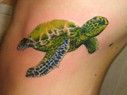 Sea Turtle: Tattoo Ideas, Tattoo Inspiration, Tattoo Designs, Body Art, Tattoo'S, Sea Turtle Tattoos, Sea Turtles, Ink