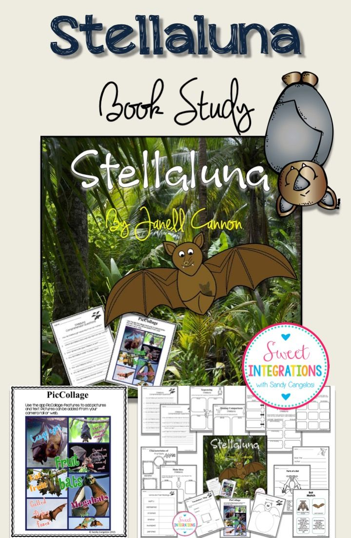 Stellaluna is an excellent book to read when studying about bats. Students learn facts about bats and life lessons. $