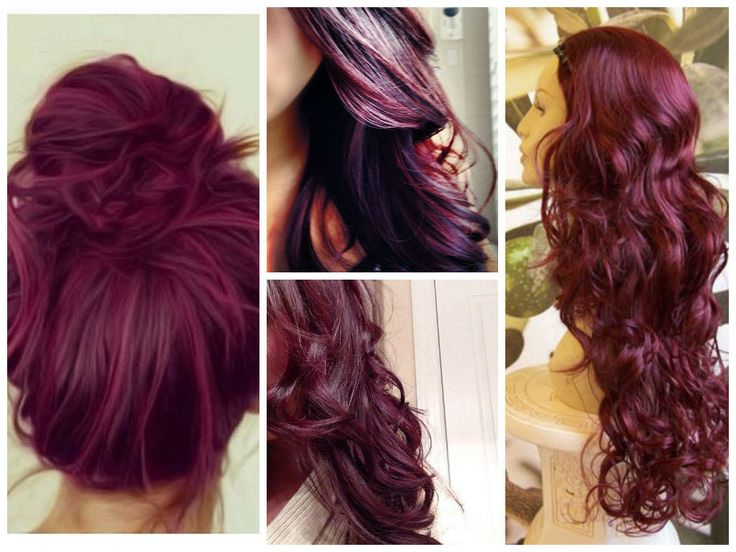 1000 Images About My Burgandy Purple Hair On Pinterest