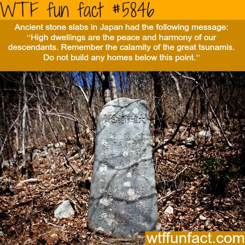 Ancient stone slabs warns people not to build homes…- WTF fun facts