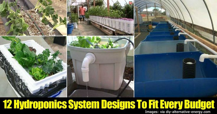 hydroponics-systems-63020151526